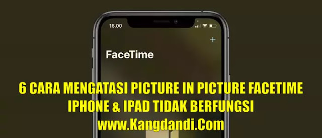 Cara Mengatasi Picture in Picture Facetime iPhone dan iPad Tidak Berfungsi