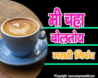 Mi Chaha Boltoy Nibandh In Marathi