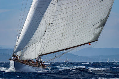 Pittwater to Paradise Ocean race
