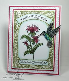 Hummingbird, hummingbird die