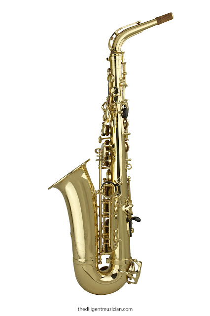 Back shot of the SeleS Axos Alto Saxophone