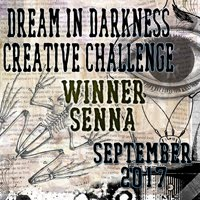 09/2017 Winner at Dream in Darkness