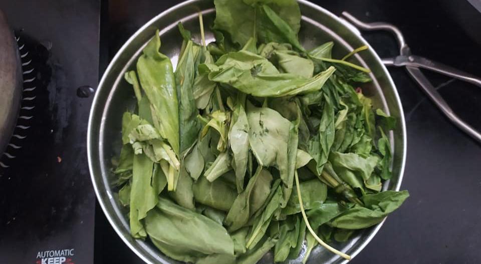 Palak paneer Indian subcontinent vegetarian dish