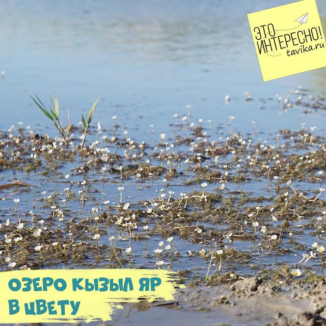 озеро Кызыл-Яр весной