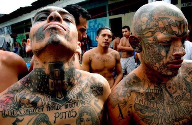 cartéis de drogas mexicanos