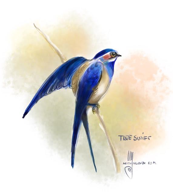 Treeswift bird painting by Ulf Artmagenta