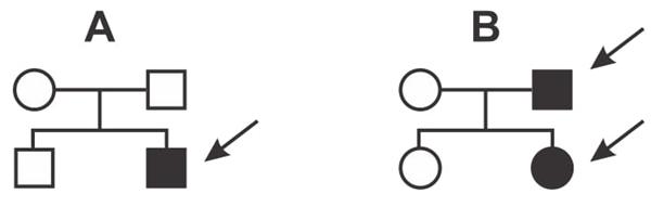 (Albert Einstein 2017) Nos heredogramas abaixo, o casal indicado por A tem dois filhos e o casal indicado por B, duas filhas. As setas indicam pessoas que apresentam uma dada doença