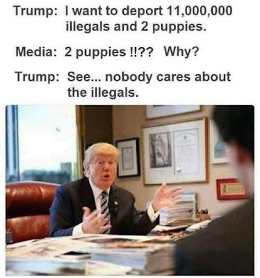https://twitter.com/realDonaldTrump/status/1151095675213553664?s=19