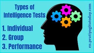 Types of Intelligence