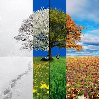 Setiap Musim Kehidupan Memiliki Tujuan