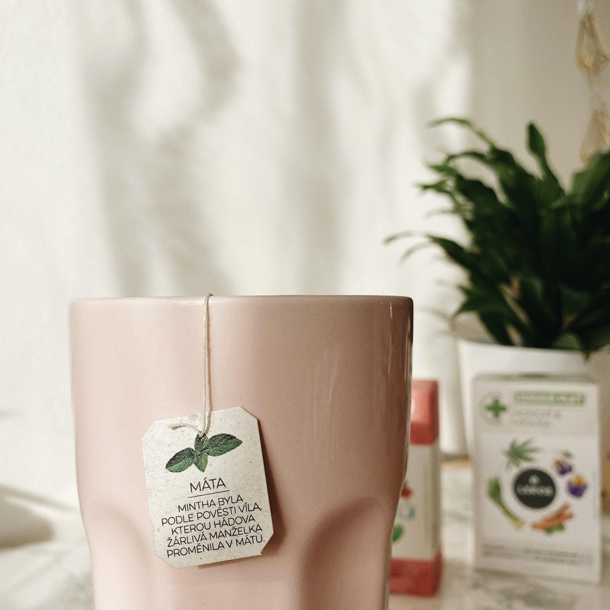 čaj, leros, bylinky, recenzia