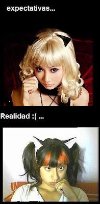 expectativa vs realidad: gatita