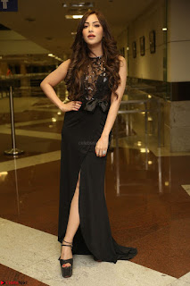 Angela Krislinzki in Transparent Black Gown at Rogue Movie Teaser Launch 1st March 2017 039.JPG