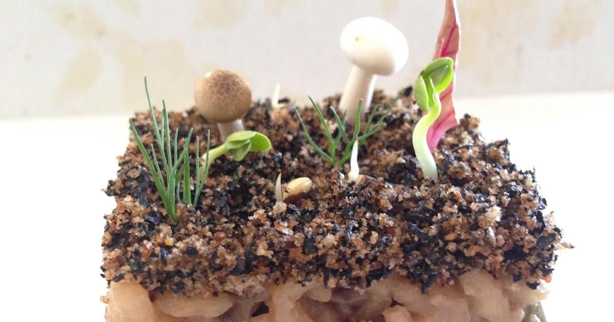 Menjar a cala blanca rissoto de setas tierra de for Setas jardin