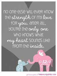 Love Quotes for Mother from Son: No one else will ever know the strong of my love for you.