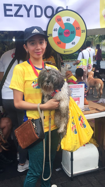 It's Raining Paws and Claws At Pet Express Doggie Run 2019