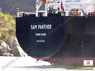 SAM Panther