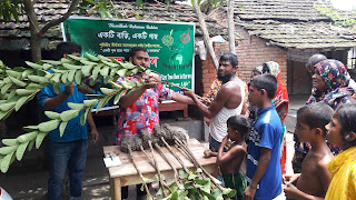 Plantation of Trees in Home on Friday 16th August 2019.