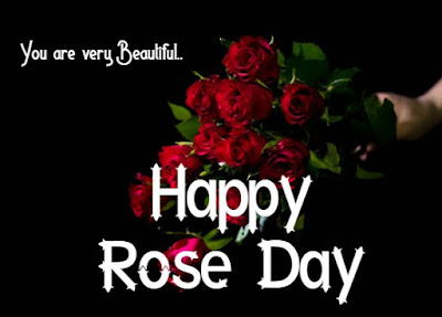 Happy Rose Day 2020 Wishes For Rose Day
