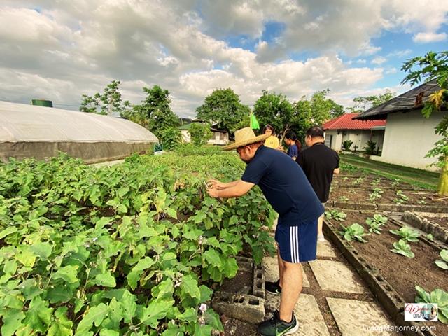 Kahariam Organic Farm in Batangas