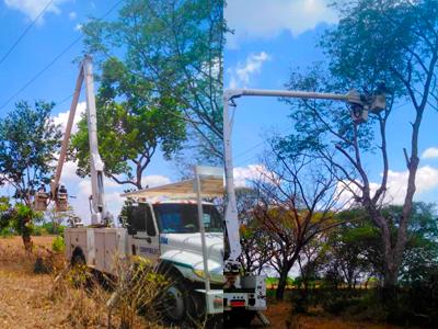 APURE: Realizaron pica y poda de árboles en circuitos Arichunita 13.8 kV y Pedro Camejo 34.5kV