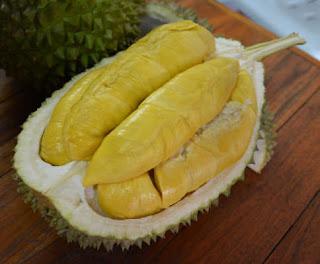 ต้นทุเรียนมูซังคิง ทุเรียนมาเลเซีย รสชาติดี