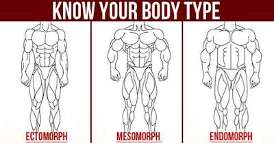 What Your Body Type: Ectomorph, Mesomorph or Endomorph?