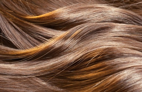 Các biện pháp tự nhiên giúp tóc mọc nhanh hơn