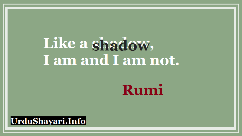 Shadow quotes rumi, Short deep lines - Like shadow I am and I am not.