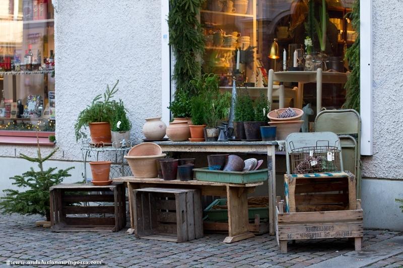 Andalusian auringossa_Göteborg_Haga_kukkakauppa