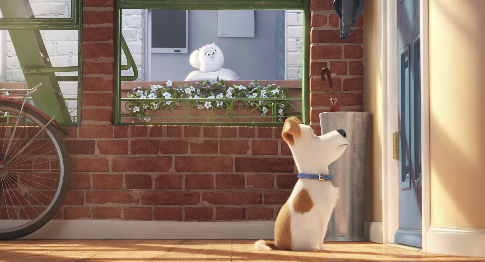 Discover The Secret Life Of Pets When Youre Not Home Bettina Heels Belka Black Hitam 39 Ever Wonder What Your Do Around