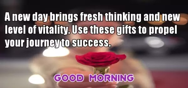 Lovely Goodmorning Quotes, Beautiful Good Morning Quotes