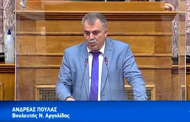 Υγειονομική θωράκιση της νησιωτικής Ελλάδας ενόψει της νέας τουριστικής περιόδου ζητάει ο Α. Πουλάς
