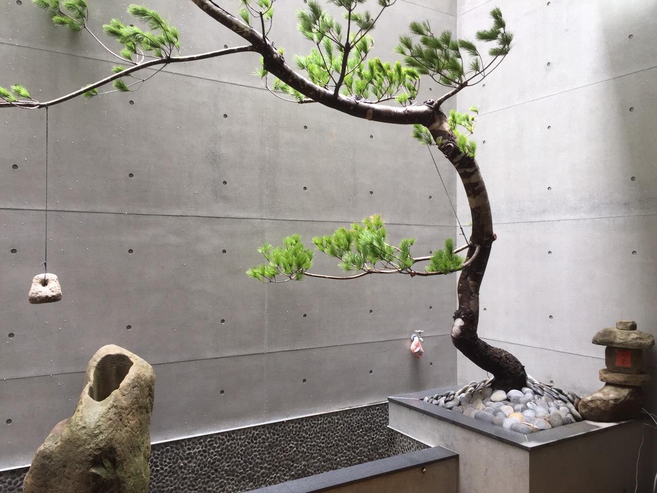 海泓建設: 「特別專訪」順乎自然的園藝家-章靈
