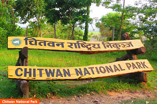 Cover Photo: Chitwan National Park