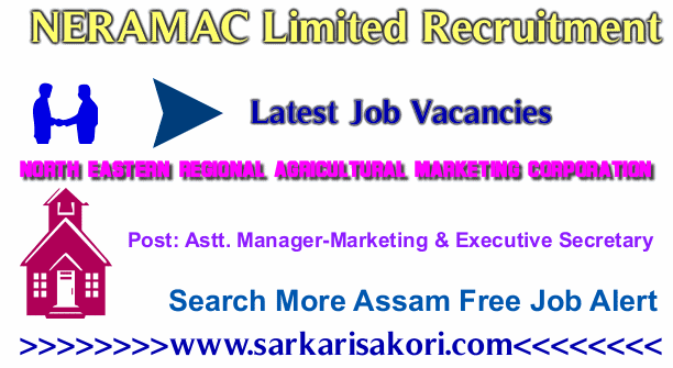 NERAMAC Limited Recruitment 2017 Astt. Manager-Marketing & Executive Secretary(ES)
