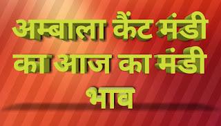 Aaj ka mandi bhav   ambala anaj mandi   ambala catt mandi bhav   हरियाणा मंडी भाव   mandibhavkhabar.com   mandibhavtoday.com   mandibhav.com