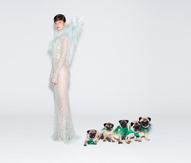 http://www.tatler.com/news/articles/october-2016/video-pug-puppies-and-couture-dresses