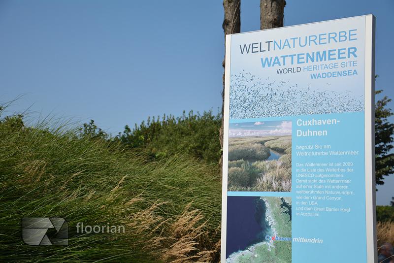 Morze Wattowe i Cuxhaven - przewodnik, informacje praktyczne, porady i mnóstwo zdjęć. Watty (osusza) to szerokie równiny pływowe odsłaniane w czasie odpływu morza sięgające wielu kilometrów!