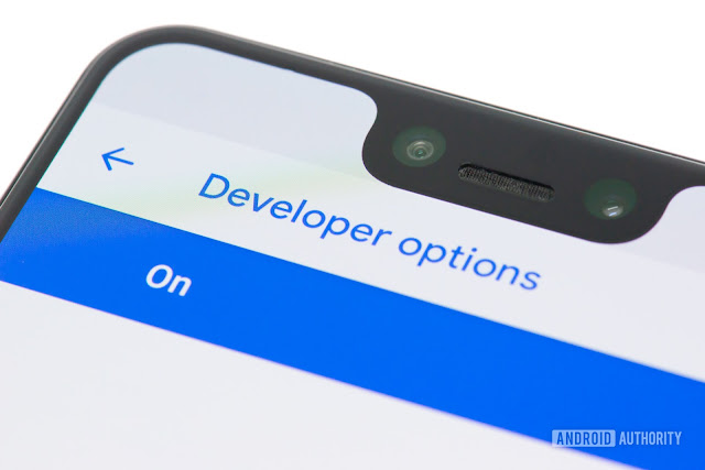 What is Developer Options? How can I see it?