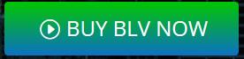 https://blockvestico.io/