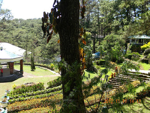 Where To Stay in Baguio City