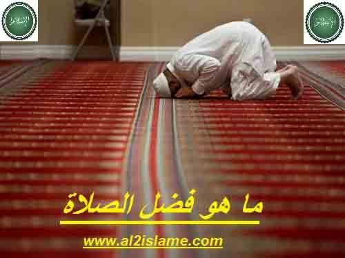 فضائل الصلاة في الدنيا والاخرة