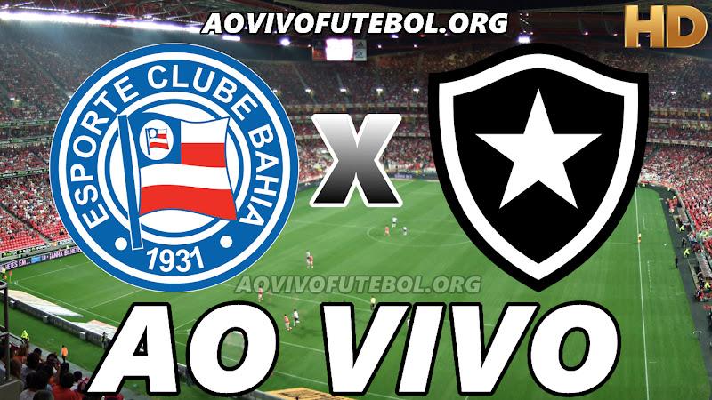 Bahia x Botafogo Ao Vivo HD Online