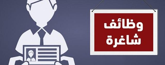 فرص عمل في مصر - مطلوب فرص عمل في مصر - 1 - 07 - 2020
