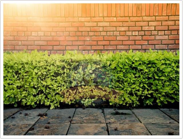 هل الجدار الخرساني المسبق هو الخيار الأفضل للحد من الضوضاء؟