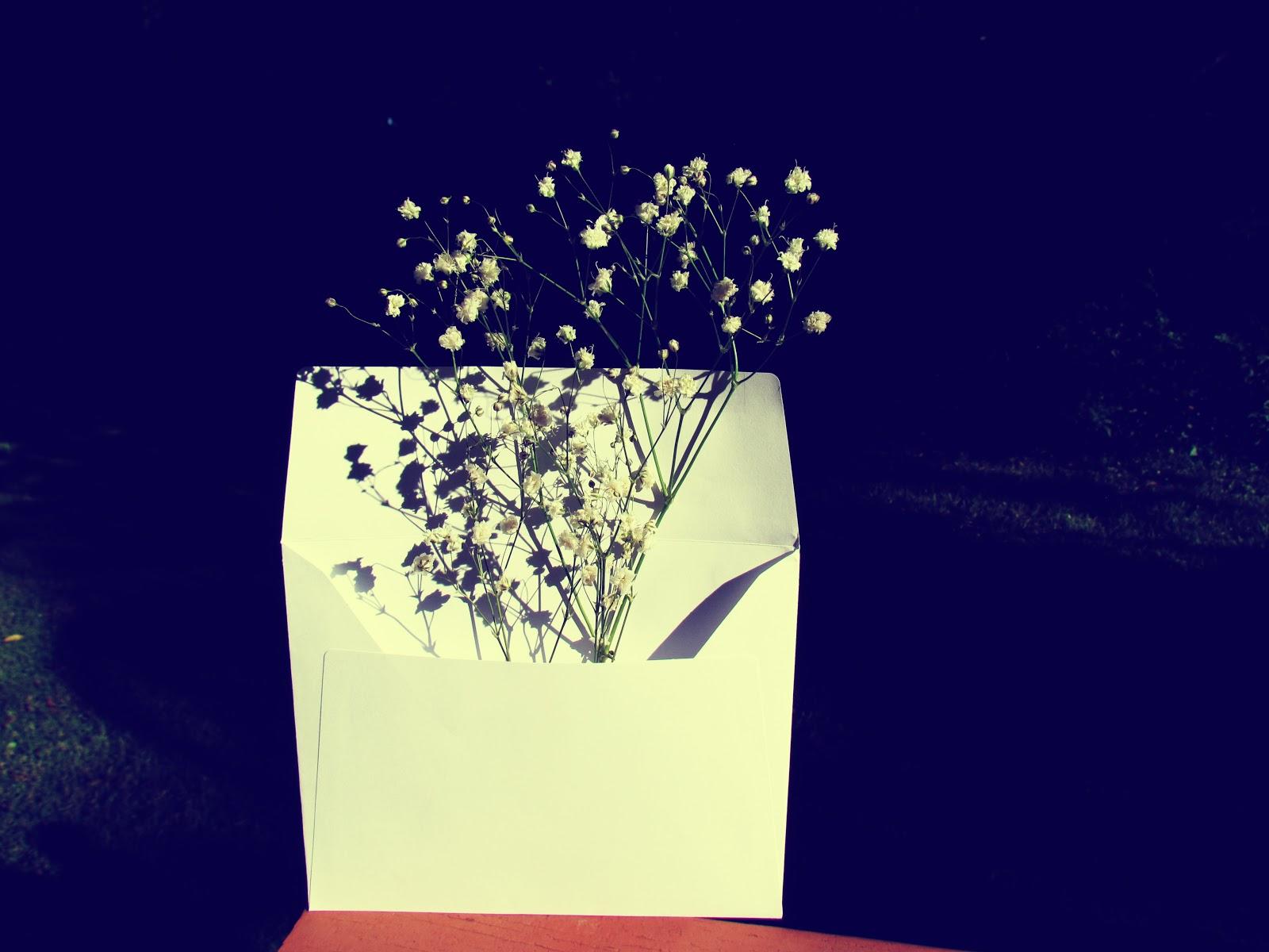 Baby breath flower, nature in an envelope, envelope spells, herbal spells, the metaphysical properties of baby's breath flower bouquet