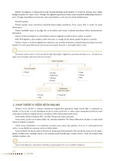 Sanat Tarihi Ders Kitabı Cevapları Koza Yayınları Sayfa 12