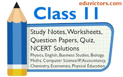 Class 11 Study Notes, Computer Science, Informatics Practices, Physics, Business Studies, Maths, Chemistry, Biology, Economics, Physical Education