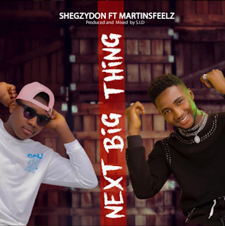 shegzydon — Next Big Thing ft. Martines feelz mp3 download